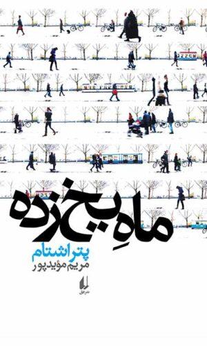 مجموعه داستان ماه یخ زده - نوجوانان و جوانان - پتر اشتام